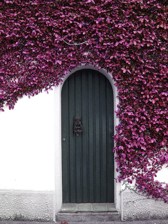 30 Most Creative Exterior and Interior Doors